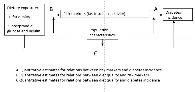 diabetes carolien